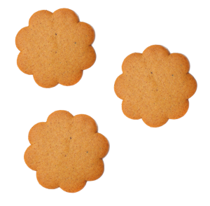 cookie_files